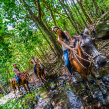 Vida Aventura Nature Park - Horseback Riding